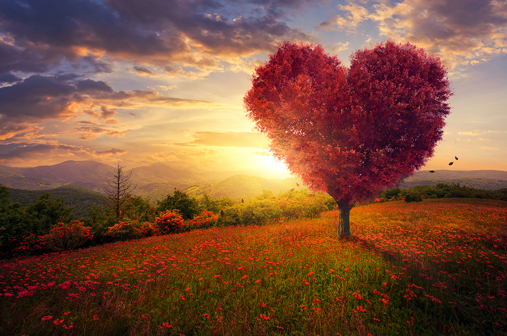 positive quotes and heart tree